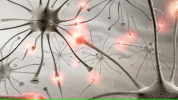 """Inauguran las instalaciones de """"Neuro-FUESMEN"""""""