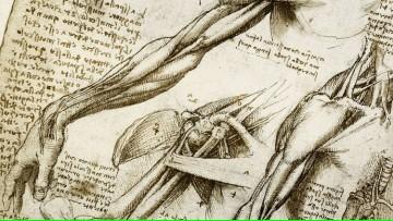 Presentación de trabajos del Taller \Estudio de la anatomía a través del dibujo y la escultura\