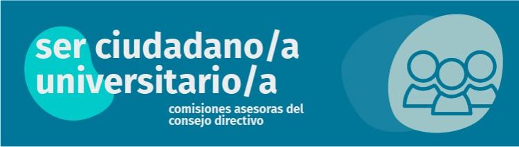 ¿Qué son las Comisiones Asesoras del Consejo Directivo?