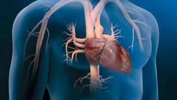 Estudiantes de Medicina invitados al XXXII Congreso Nacional de Cardiología