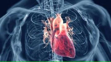 Cardiopatía Isquémica para estudiantes de 5° y 6° años de Medicina