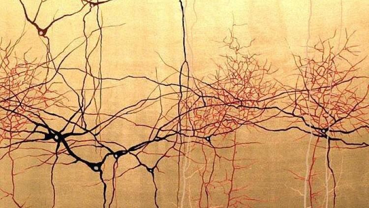 """Inscriben al curso """"De las Moléculas a los Sistemas: Una Mirada a la Neurobiología Moderna"""""""