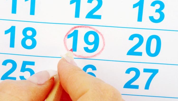 Planes, cronogramas y fechas importantes