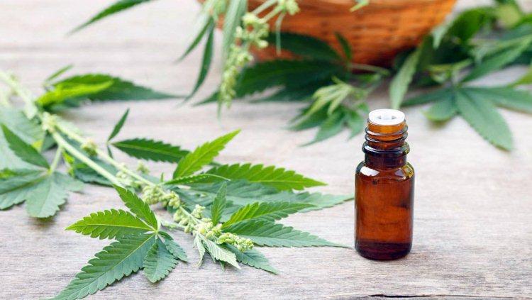 Jornada de reflexión sobre \Cannabis medicinal\ y \Marihuana y Cerebro\
