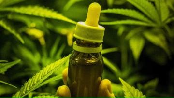 """Charla """"Marihuana medicinal: tras la evidencia científica"""""""