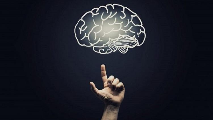 """Invitan a la Conferencia """"Neurociencias en la vida cotidiana"""""""