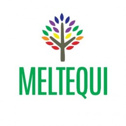 Grupo Meltequi